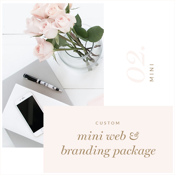 Mini Custom Blog Website Logo Package