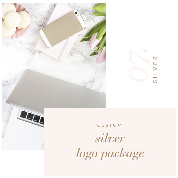 Silver Custom Logo Package