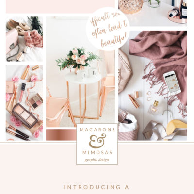 Rose gold pink branding board, blush pink script logo, feather logo design, rose gold feather branding, photography logo design, wedding photographer branding package
