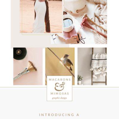 Custom Brand Reveal :: Amal East Photograpy